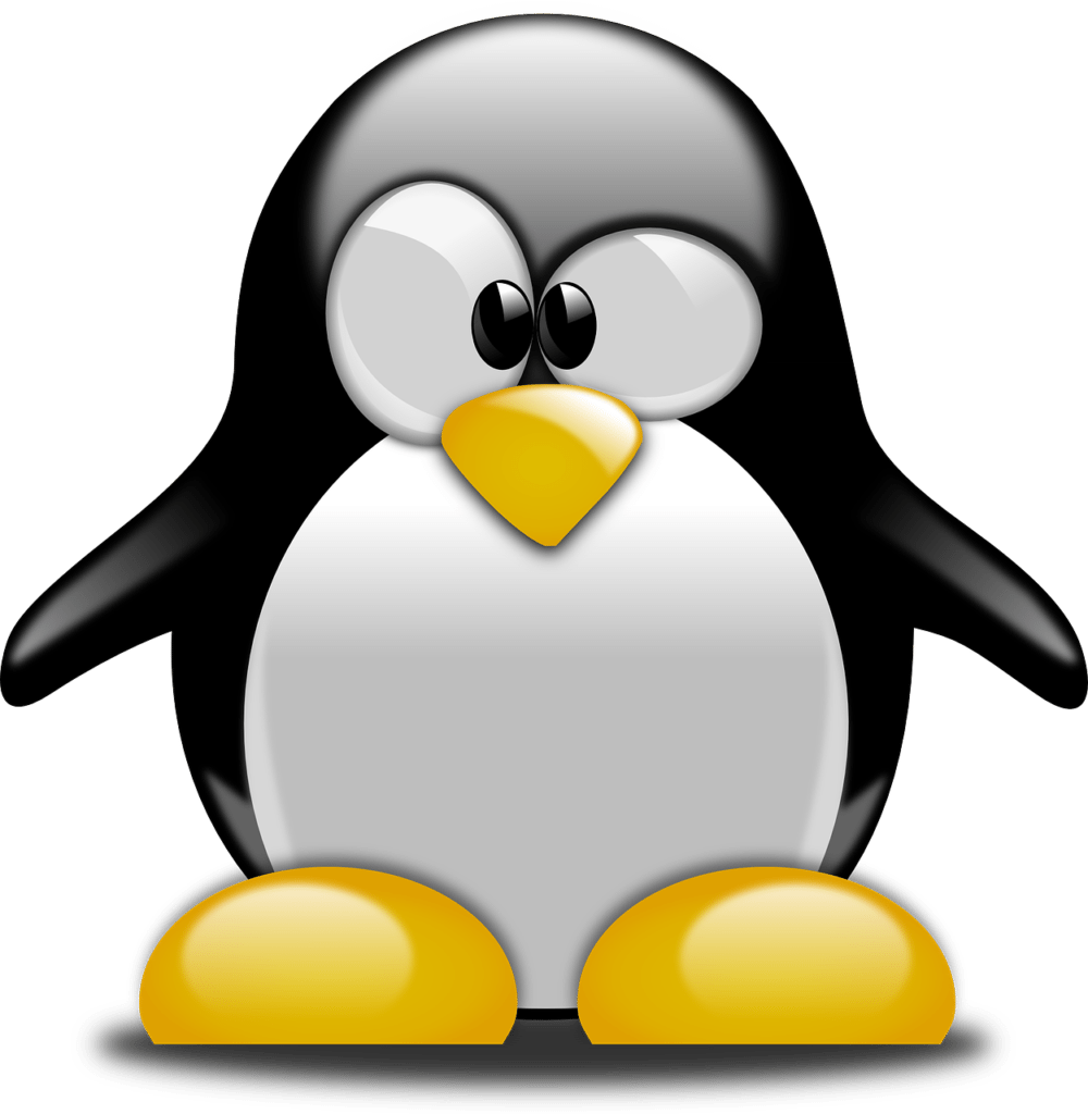 penguin-158551_1280 - Penguins, Pandas and Hummingbirds - What Does it all Mean?
